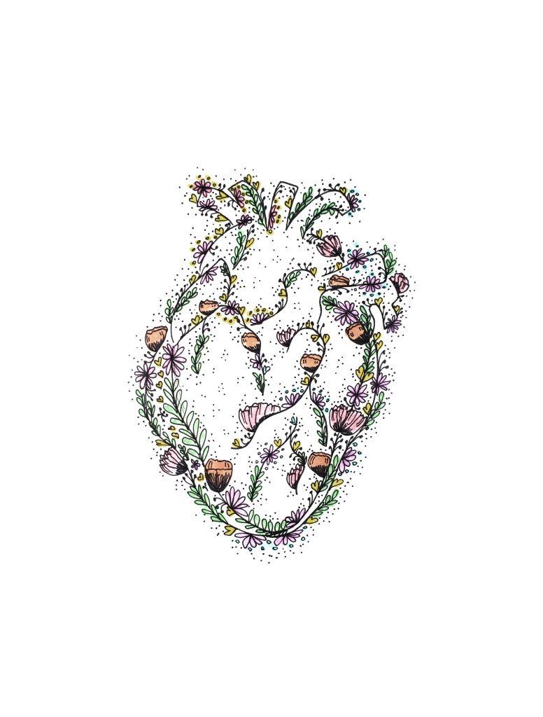 Corazón ilustrado rcp